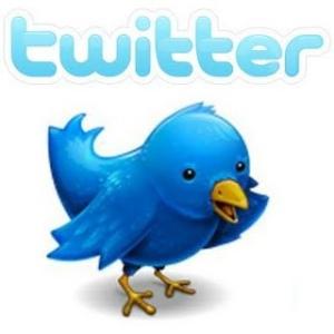 twitter logo with bird